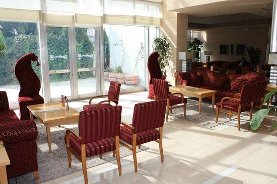 Radisson Blu Hotel, Ankara: Lounge area