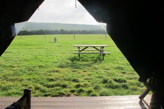 Feather Down Farms at Boswarthen Farm: View from the tent