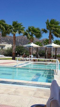 Mammis Beach Studios: pool from the bar area