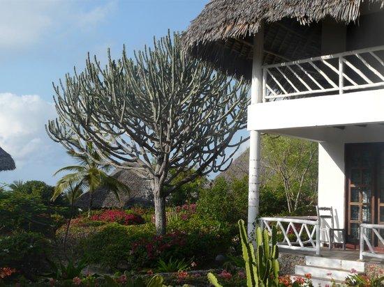 Eden Village Watamu Beach: camere