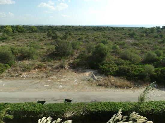 HSM Canarios Park: Again not a pretty sight