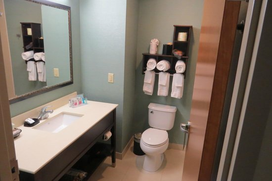 Hampton Inn Chattanooga West/Lookout Mountain : Bathroom