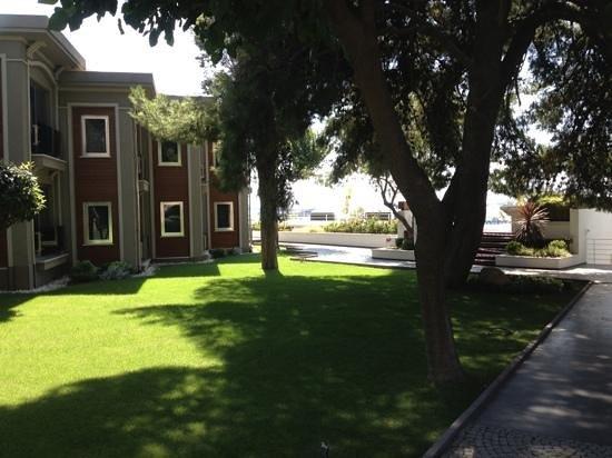Park 156 : gardens
