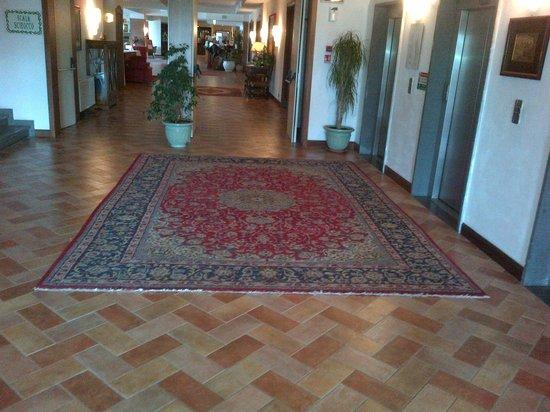 Fattoria La Principina Hotel : la hall