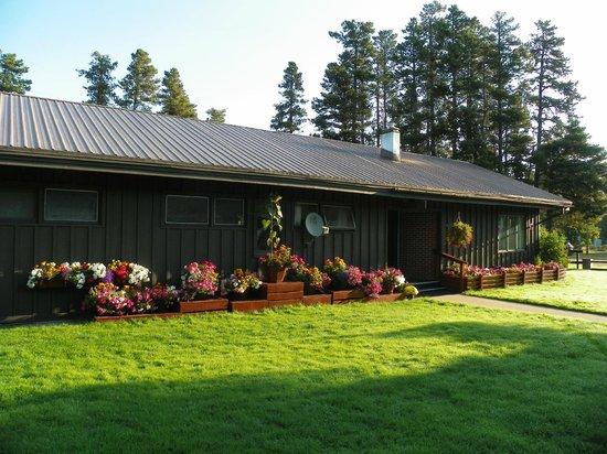 Mountain Pine Motel: Beautiful lawn & flowers