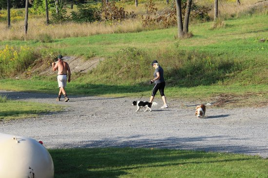 The Inn at Grist Iron: The owners walking their dogs!! Great people!