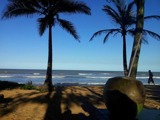 Praia de Manguinhos: Vista a la playa desde un Bar donde venden agua de Coco.