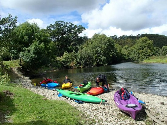 Trellyn Woodland Camping: Kayaking on the River Teifi