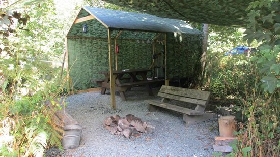 Trellyn Woodland Camping: Sheltered area
