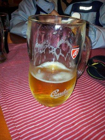 Cafe bar Nad Certovkou: Good beer