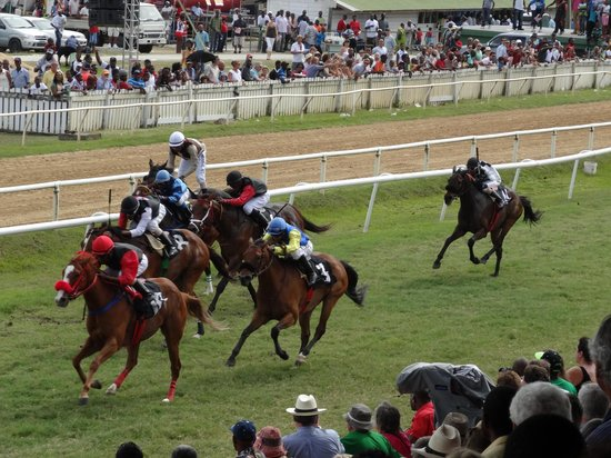 Garrison Savannah - Barbados Turf Club: A wonderful carnival of life!