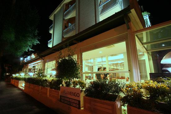 Photo of Hotel Flamengo Riccione