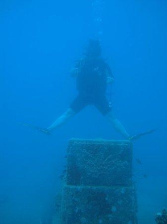 El Tour Caribe -  Tours : Unbelievable shipwreck dive !