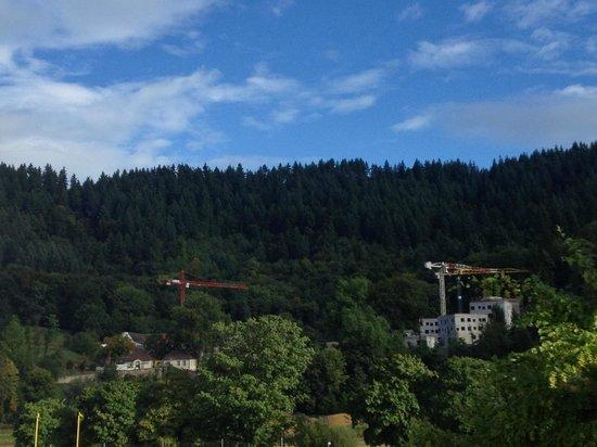 FT Sportpark Hotel: La foresta nera