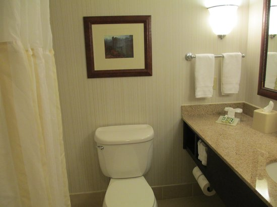 Hilton Garden Inn Boston/Waltham : Clean Bathroom