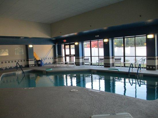 Hilton Garden Inn Boston/Waltham: Clean poo - no hot tub