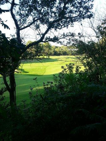 Pierre & Vacances Village Club Moliets : vue sur le golf