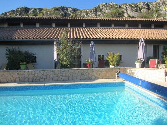 Hotel Le Vieil Amandier : The pool area