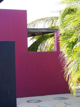 The Hotelito: So pretty.  Nature and vibrant color together.