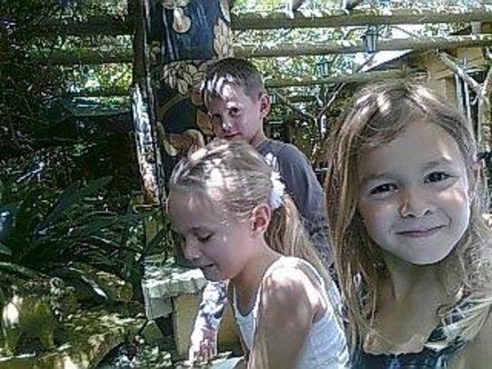 SEASON RESTAURANT : The grandchildren enjoying the outdoor area and the fish pond.