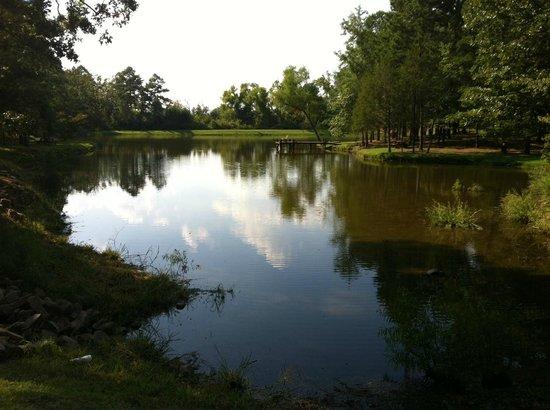 Eagle Creek Escape Guest Cottages: The pond.