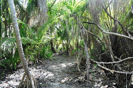 Casa Barabaru: Unberührte Natur