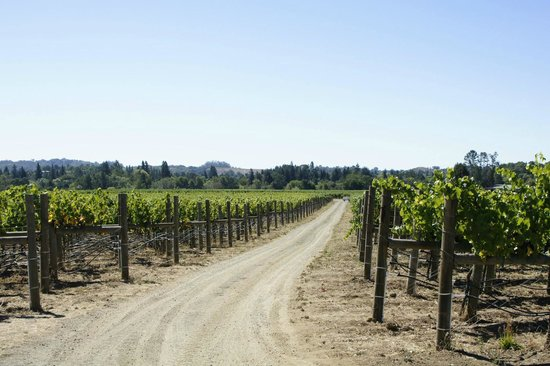 Hendry Ranch Wines: Hendry Vineyards