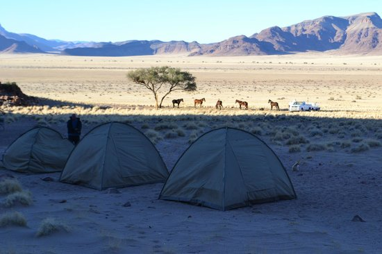 Setting off from Desert Homestead - Picture of Desert Homestead Lodge ...: https://www.tripadvisor.co.uk/LocationPhotoDirectLink-g479221-d658927-i75976652-Desert_Homestead_Lodge-Namib_Naukluft_Park_Khomas_Region.html
