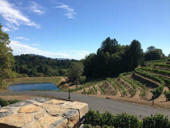 Pride Mountain Vineyards