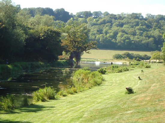 Meon Springs Glamping: The surrounding beauty