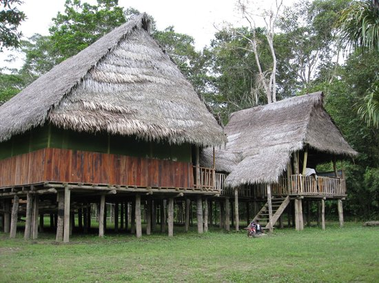 Amazonia Garden of Light: View from Ceremonial House