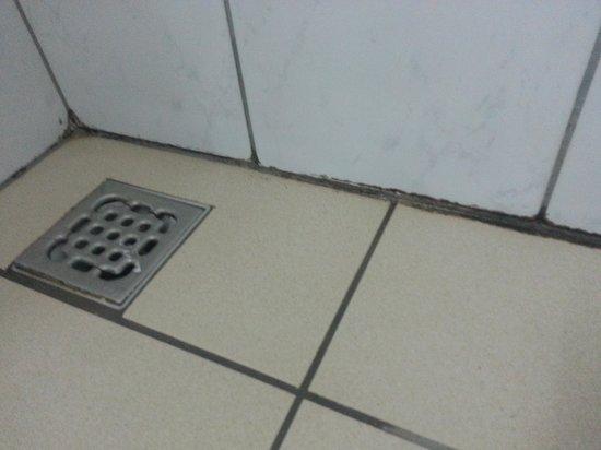 Hotel Adria: La propreté de la salle de bain...laisse à désirer
