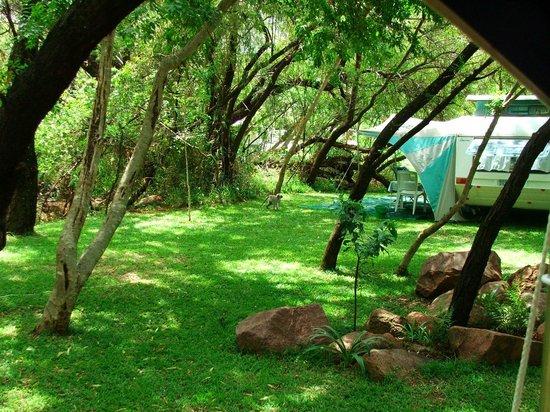 De Rust Caravan Park