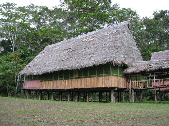 Amazonia Garden of Light: Dorm Room