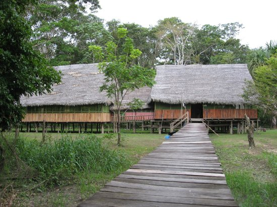 Amazonia Garden of Light : View from the Yarapa River Docking Area