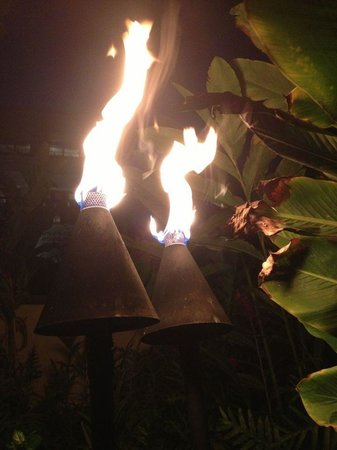 Grand Hyatt Kauai Resort & Spa: We loved all of the tiki torches lit on the grounds at night!