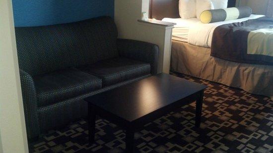 Best Western Plus Arlington North Hotel & Suites: bedroom