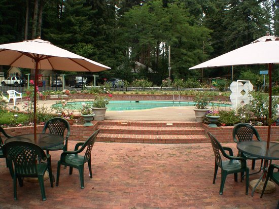 Quality Inn & Suites Santa Cruz Mountains: Scenic Patio Area