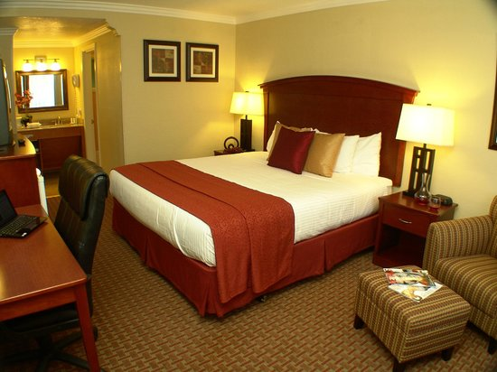 Quality Inn & Suites Santa Cruz Mountains: King