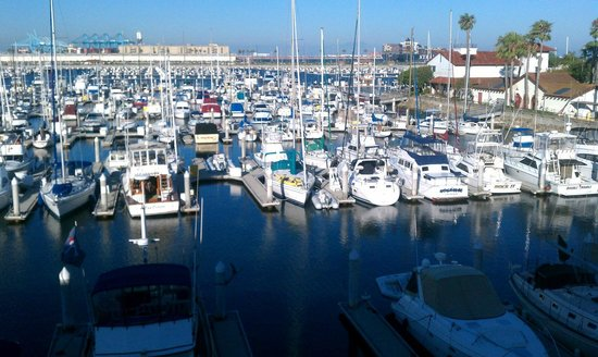 DoubleTree by Hilton Hotel San Pedro : marina out window