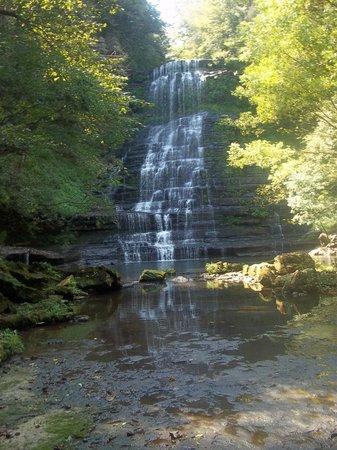 Evins Mill: Falls