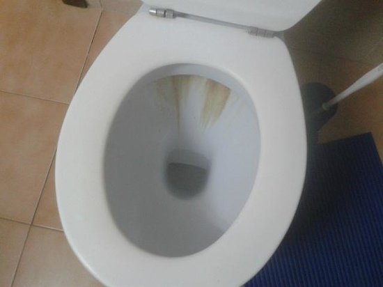 Apartamentos Gomila Park: Toilet bowl