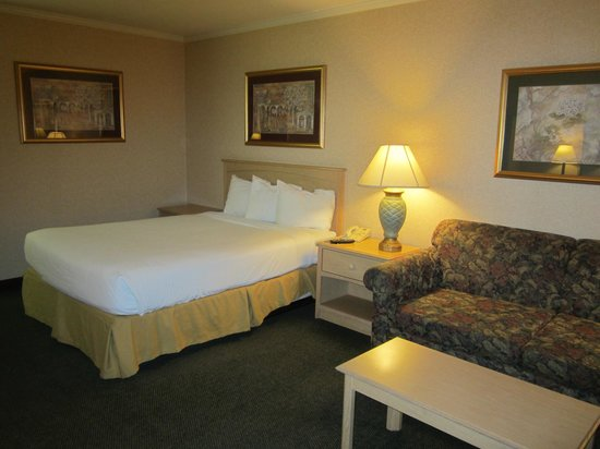 Motel 6 Lodi: Spacious Room