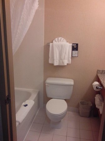 Mountain Retreat Hotel: Great bathroom with lots of fluffy towels