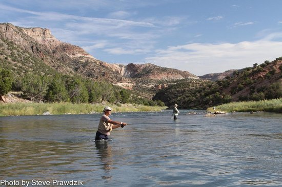 Gunnison gorge float fishing picture of arkansas river for Arkansas river colorado fishing