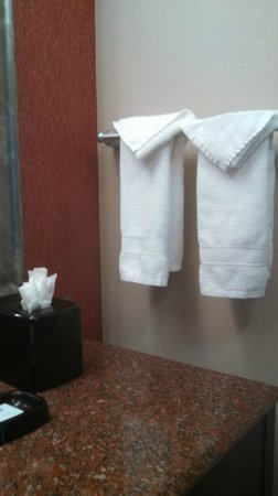 Hampton Inn & Suites Richmond/Glenside : 2nd Room 405 I think...