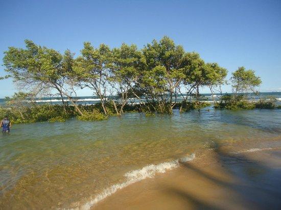Gaibu Beach: Praia de Gaibú- Mangue