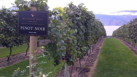 Uncorked Okanagan Wine Day Tours: Mission hill wineries