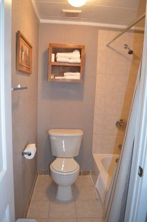 Flute Shop Motel: Bathroom