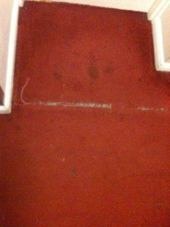 Prince William Hotel : Carpet